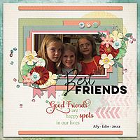 Br-Friends.jpg