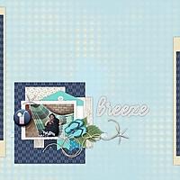 BrushAug2020.jpg