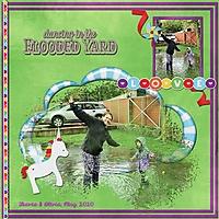 FloodedYard_1.jpg