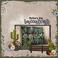 Mother_s_Day_Succulents.jpg