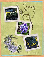 Spring120.jpg