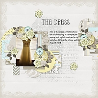 TheDress1.jpg