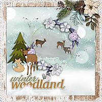 Winter-woodland.jpg