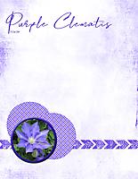 Purple-Clematis.jpg