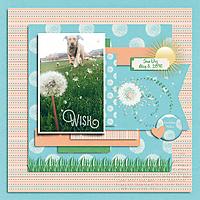 0412_Sun_Dog_JBS-OneClickTemplates2-tp3_gallery.jpg
