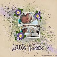LittleBundle.jpg
