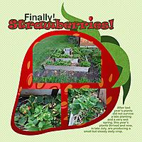Strawberries12.jpg