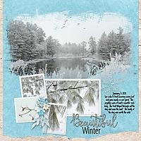 winter-frost2.jpg