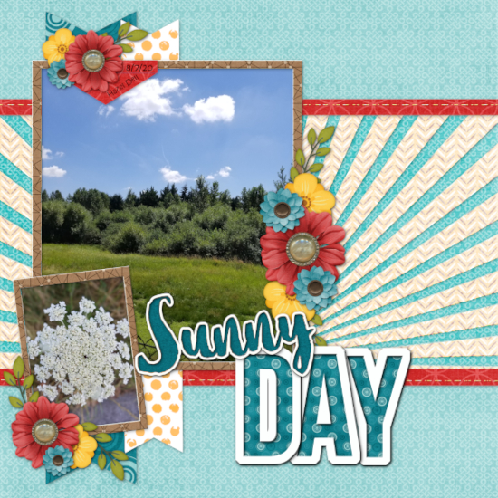 Sunny Day, August 2020