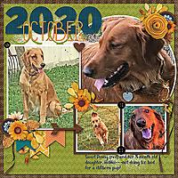 2020OctCh-PennyHeiHei100820-WEB.jpg