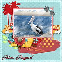Pelican_s-Playground.jpg