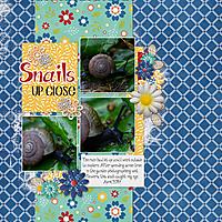 SnailsCAPMay20.jpg