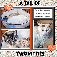 Daily_A-Tail-of-Two-Kittiesw.jpg