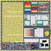 ddd_organizing.jpg