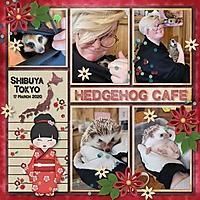 HedgehogCafe2.jpg