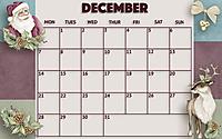 November_20202.jpg