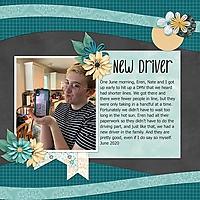NewDriver.jpg