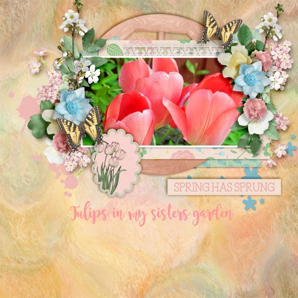 Spring-has-sprung12