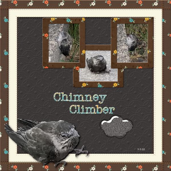 Chimney Climber