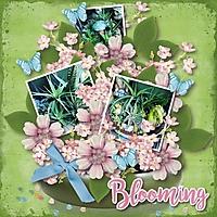 Blooming21.jpg