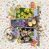 Butterflies_Blossoms_med_-_1.jpg