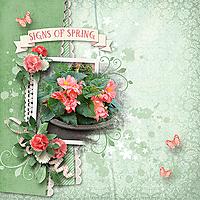 Signs-of-Spring_webjmb.jpg