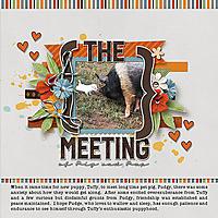 The-meeting_webjmb.jpg