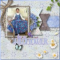 ahd_FieldOfWildflowers-600.jpg
