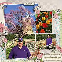 DT-Adventure2-temp2-ads-springflowers-copy.jpg