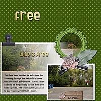 Free_1.jpg