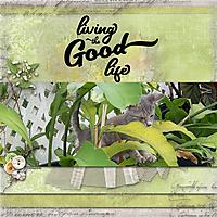 LivingTheGoodLife.jpg