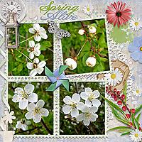 Spring_Alive3.jpg