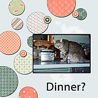 Mix-It_Dinner.jpg