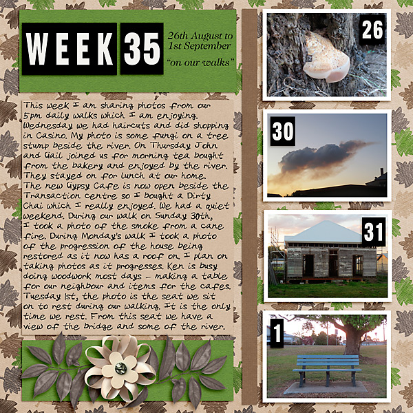 Project Life 2020 Week 35