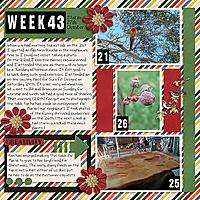 PL2020_Week43-copy.jpg