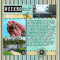 PL2020_Week50-copy.jpg
