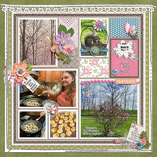 Week 19 Focus on Spring