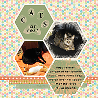 Cats-at-rest.jpg