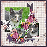 Kitty_Cat-_feb_20_recipe_challenge-DianaS.jpg