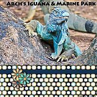 2020-February-Scraplif_Arch_s-Iguana-_-Marine-Park.jpg