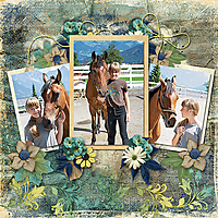 HorseRoad_ollitko.jpg