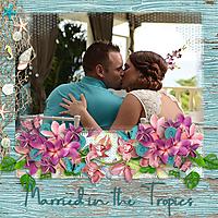Married_in_the_Tropics.jpg