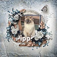 Pippi_webjmb.jpg