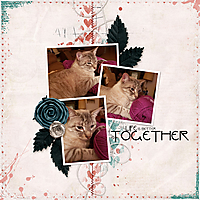 Together69.jpg