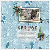 08_23_19_Giant-Spruce.jpg