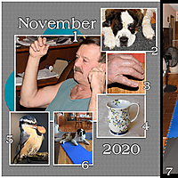 2020-11-01-left-Web.jpg