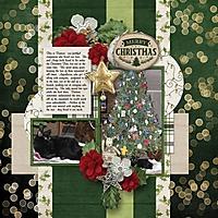 ChristmasCat_600_x_600_1.jpg