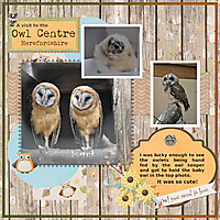 Owl_Centre.jpg