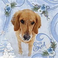 Snow_Sweet.jpg