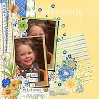 Wildflower_WEB.jpeg